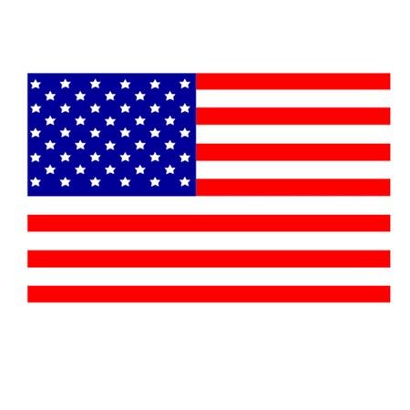 hawaii flag: American Flag Illustration