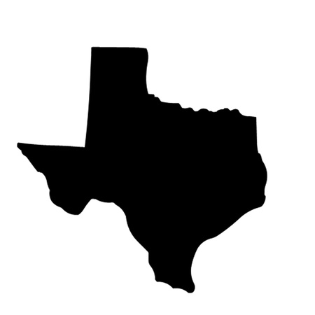 Texas State USA Vector