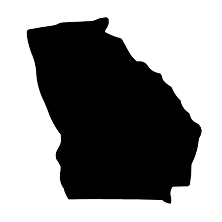 State of Georgia Vector