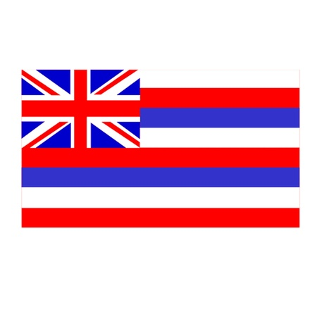 State of Hawaii Vector