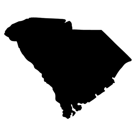 south american: State of South Carolina Illustration