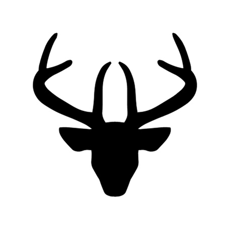 Stags Head Illustration