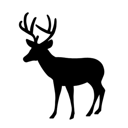 Stag Stock Vector - 12475183