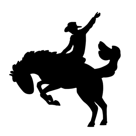 Rodeo Rider Vector