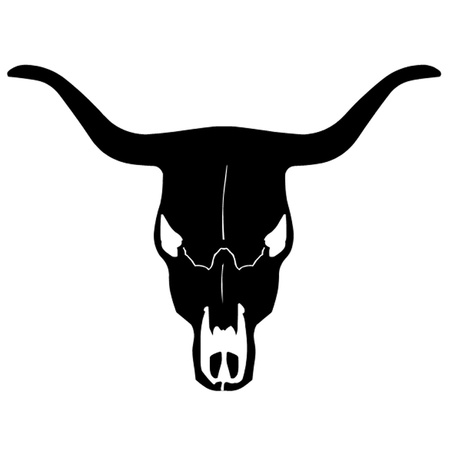 animal skull: Bull Skull