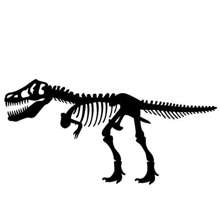 fossil: Tyrannosaurus Rex T Rex Dinosaur Skeleton Vectores