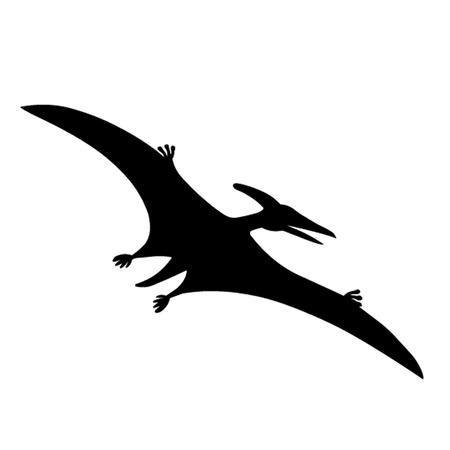 pterodactyl: Pterodactyl Dinosaur