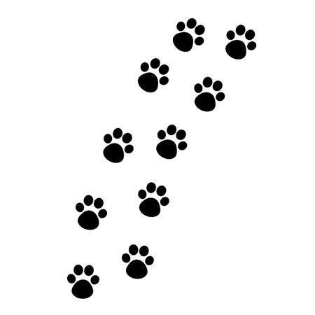 Cat Paw Track Illustration