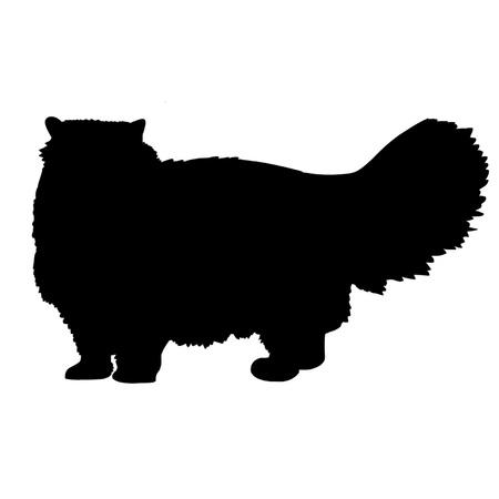 persian: Persian Cat