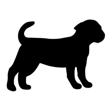 kennel: Puppy