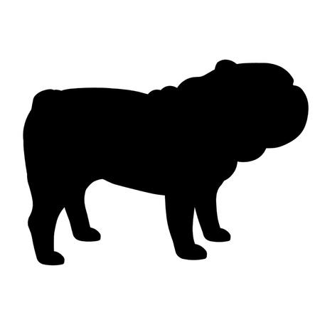 british bulldog: British Bulldog Illustration