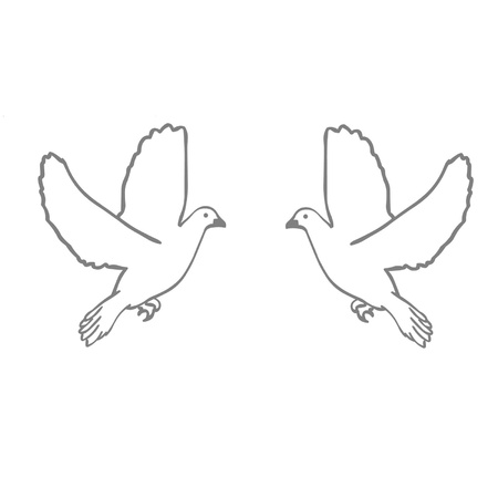 christian marriage: Doves