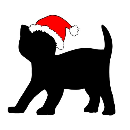 flapping: Kitten in Christmas hat