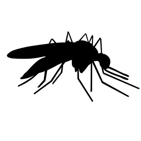 Mosquito Stock Vector - 18959443