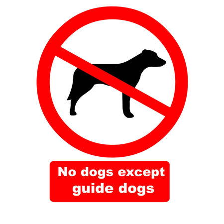 guide dog: No Dogs Except Guide Dogs Illustration