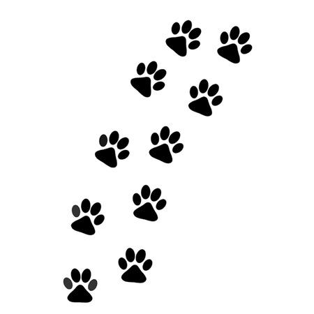 dog paw: Track of Dog Paw Prints Illustration