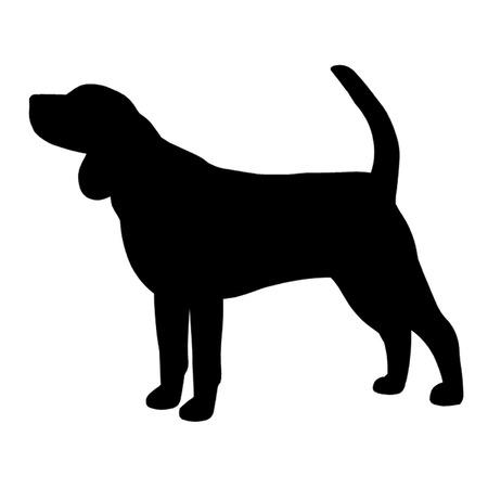 hounds: Beagle Dog Illustration