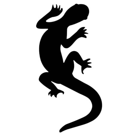 reptilian: Lizard