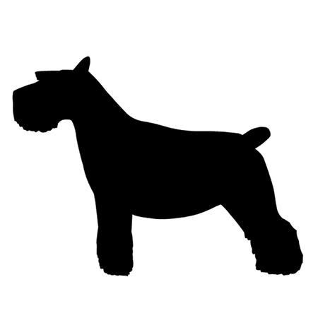 schnauzer: Schnauzer Dog Illustration