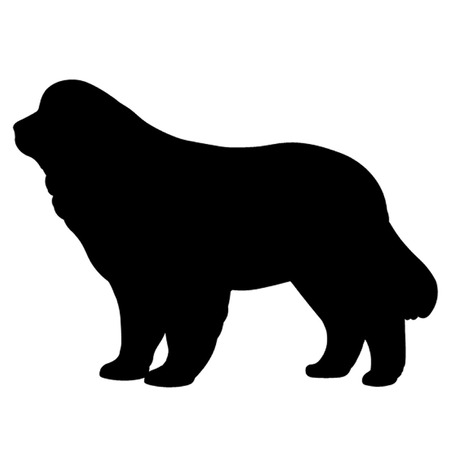 newfoundland: Newfoundland Dog Illustration