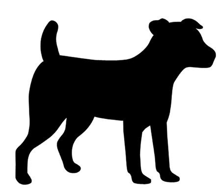 Jack Russell Dog Illustration