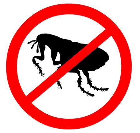 larvae: Fleas Warning Symbol Illustration
