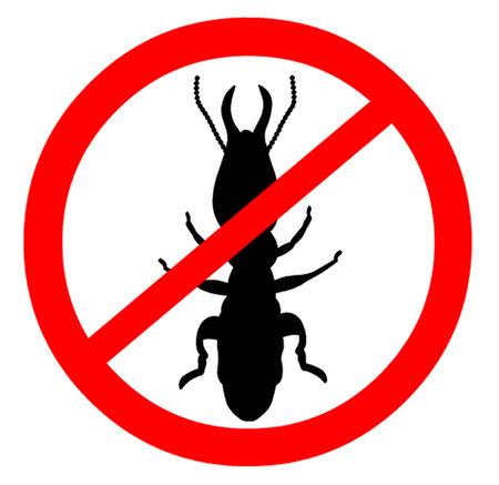 Tenga cuidado con las termitas Símbolo Foto de archivo - 43463974