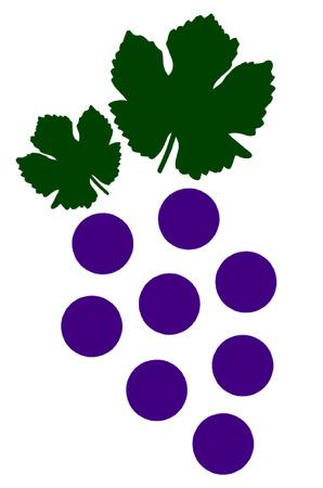 sauvignon: Grapes
