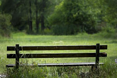 banc de parc: Park bench