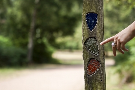 A female hand indicates a road sign on a path in the Sherwood forest  photo