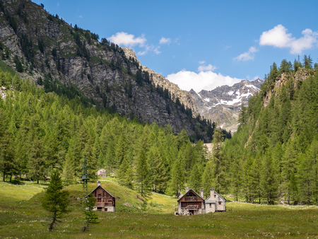 mountain houses immersed in a green valley near the italian alps