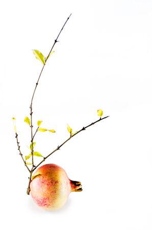 熟した: 熟したザクロと分離された黄色の葉と枝
