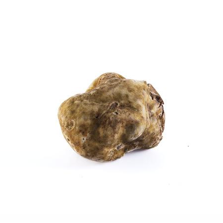 white truffle: white truffle tuber magnatum pico from Alba, italy Stock Photo