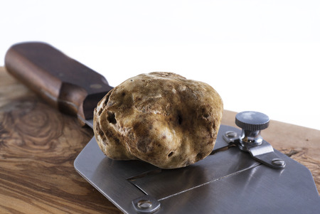 slicer: expensive white truffle from Alba and steel slicer Stock Photo