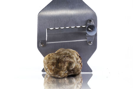 white truffle: expensive white truffle from Alba and steel slicer Stock Photo
