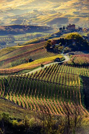 Autunno nella regione nord Italia chiamato langhe con vigneti colorati Archivio Fotografico