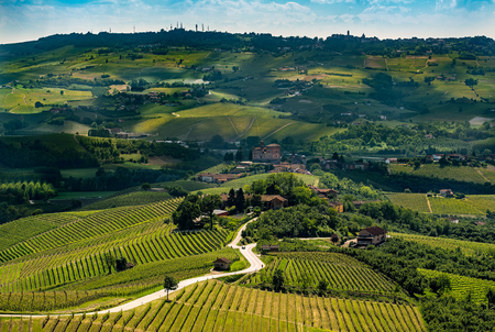 wide panorama of langhe rregion in northern Italy with vineyards and grinzane castle Lizenzfreie Bilder