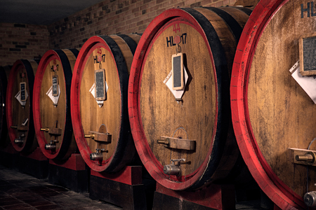 Interior of italian winery with oak barrel for aging red wine Standard-Bild