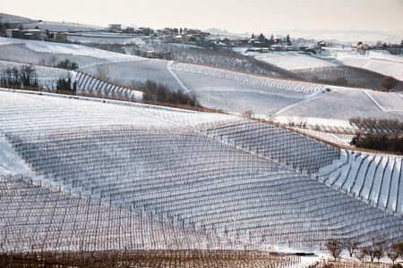 Panorama of Langhe region in Northern Italy on snowy winter