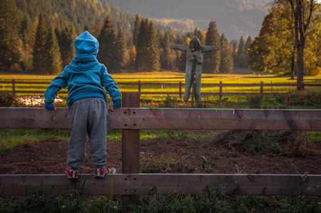 an uncertain child on the fence must cross a vegetable garden to go to the meadow, a scarecrow watches