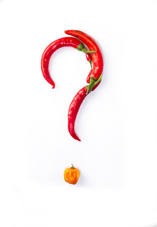 capsaicin: Question made with chillies on a white background