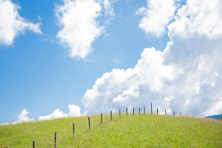 grass hill with poles with blue sky and white clouds