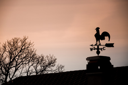 silhouette of a weathercock photo