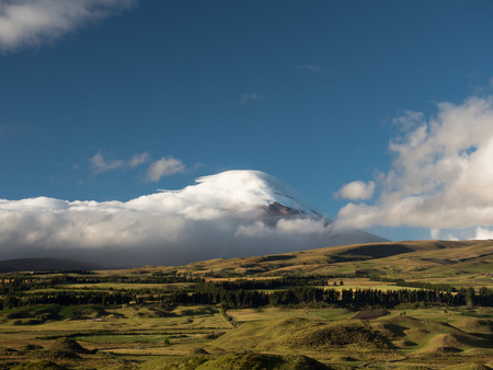 The snowy summit of Cotopaxi volcano, in Ecuador, covered by clouds during a sunny day with green grass and trees in the foreground.