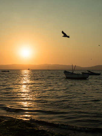 ocean fishing: Sunset by the ocean in Paracas, Peru, with anchored small fishing boats and seagulls in the orange sky. Stock Photo