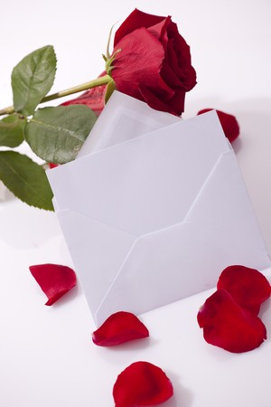 Red rose with balnk card for you own text photo