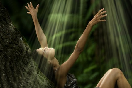 Beauty in the nature, enjoying the sunbeams Stock Photo - 7471511