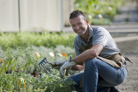 place of work: Smiling gardener in a greenhouse Stock Photo