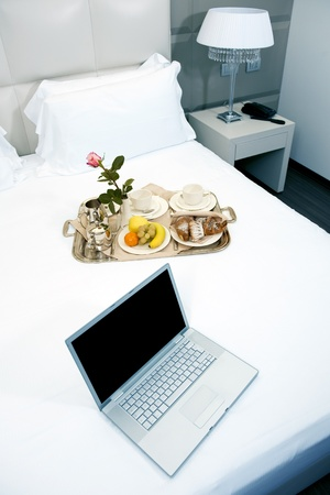 Hotel Breakfast And Laptop Stock Photo - 9260266