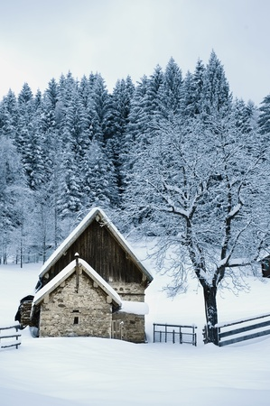 Timber House In Snowy Landscape